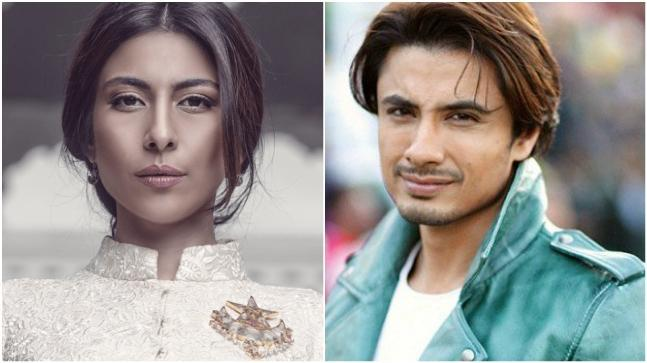 Actor and musician Ali Zafar has spoken out against the sexual harassment allegations that Pakistani actress-singer Meesha Shafi levelled on him.
