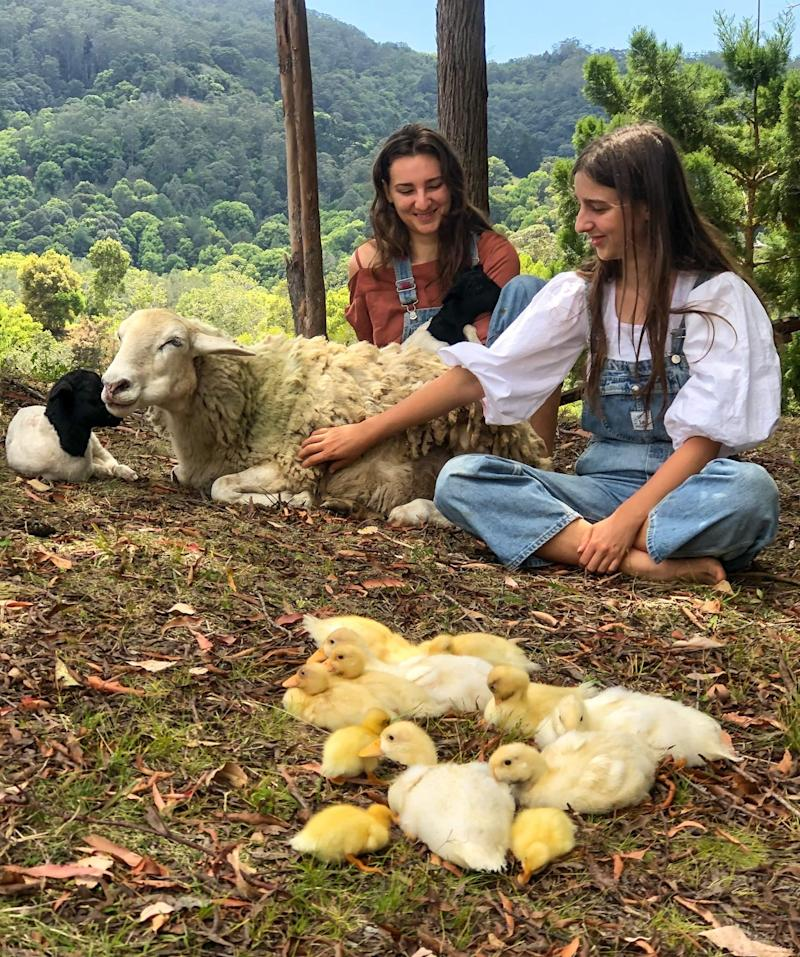 The two sisters, Julia and Anastasia, sit on the ground with ducklings and sheep.