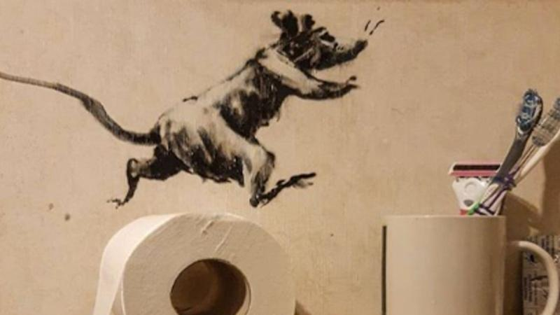 Elusive artist Banksy reveals 'work from home' masterpiece