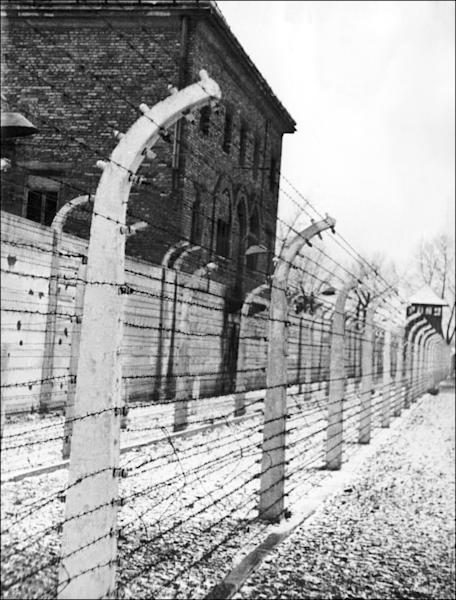 Barbed-wire fence surrounding the Auschwitz concentration camp, pictured in 1945 (AFP Photo/)