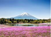 <p>This active volcano just southwest of Tokyo has a reverent status in Japanese culture, as it is believed to be the country's holiest mountain. During springtime, cherry blossoms light up the five lakes surrounding it.</p>