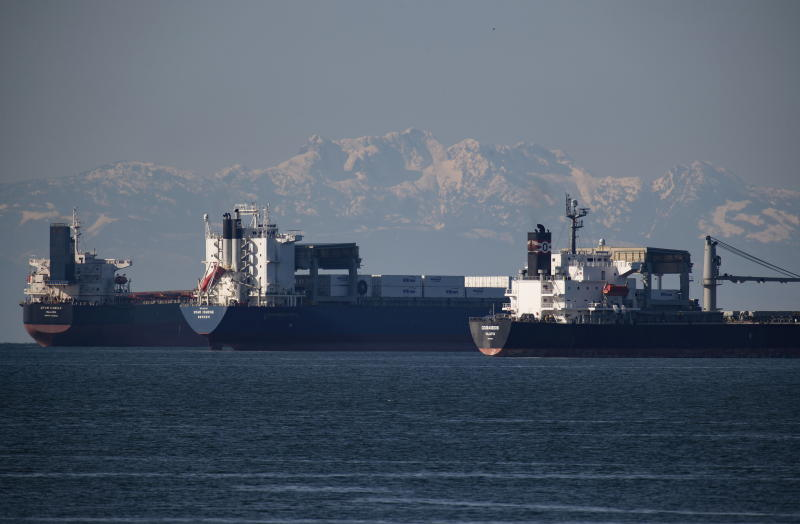 Cargo ships sit at anchor on English Bay, in Vancouver, on Thursday, February 20, 2020. Rail blockades across the country have led to an increase in the number of cargo ships waiting to load or unload according to the Port of Vancouver. (Darryl Dyck/The Canadian Press via AP)