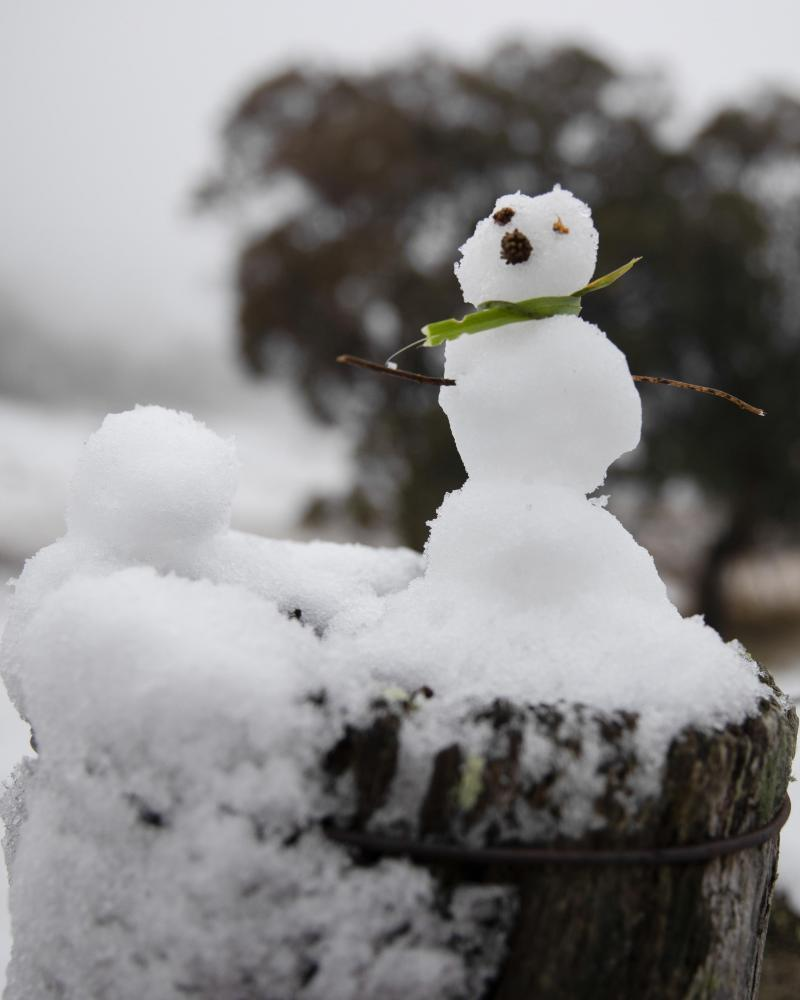 A minature snowman on a cattle yard fence