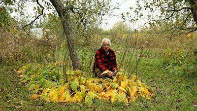 Stefan Sobkowiak on his permaculture farm in Quebec. (Photo: Olivier Asselin)