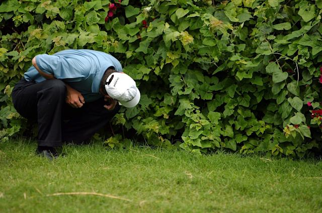 """<h1 class=""""title"""">Sony Open</h1> <div class=""""caption""""> HONOLULU - JANUARY 18: Harrison Frazar looks for a ball lost in the rough on the 6thhole during the final round of the Sony Open on January 18, 2004 at the Waialae Country Club in Honolulu, Hawaii. (Photo by Donald Miralle/Getty Images) </div> <cite class=""""credit"""">Donald Miralle</cite>"""