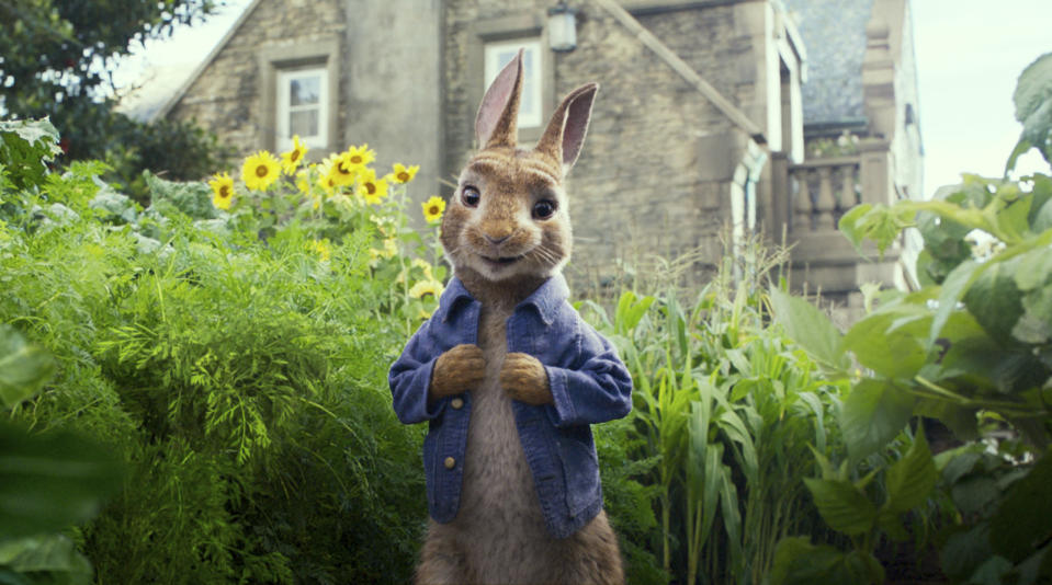 Peter Rabbit, voiced by James Corden, in a scene from <em>Peter Rabbit</em>. (Columbia Pictures/Sony via AP, File)