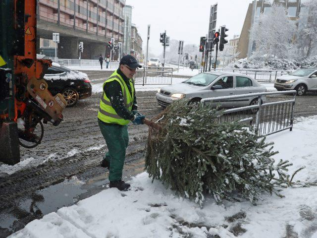 A Christmas tree is collected in the snow in Glasgow (Andrew Milligan/PA)