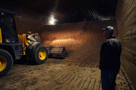 In a March 11, 2021 photo, potato farmer Brian Sackett watches as potatoes are moved from a storage bin at his farm in Mecosta, Mich. For generations, Sackett's family has farmed potatoes that are made into chips. About 25% of the nation's potato chips get their start in Michigan, which historically has had reliably cool air during September harvest and late spring but now is getting warmer temperatures. (AP Photo/Carlos Osorio)