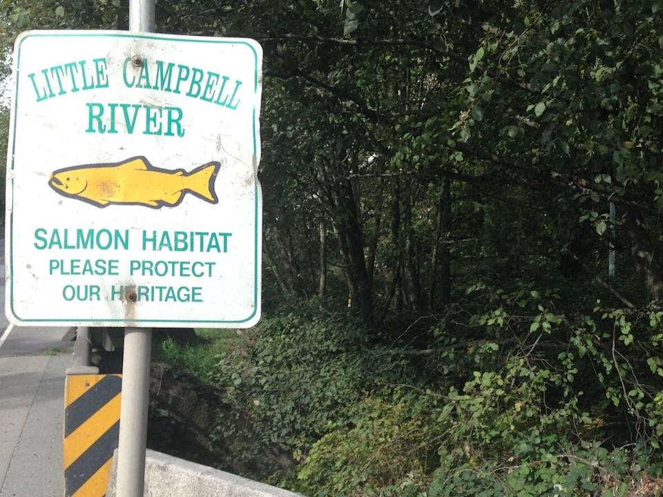 Critics say the proposed site is too close to the Little Campbell River. (Jesse Johnston/CBC - image credit)