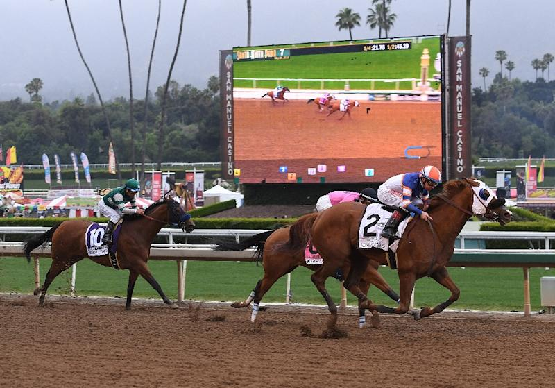 California Governor Backs Suspensions After Racing Deaths