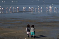 Two children stand and watch the flamingos at a salt lake in the southern coastal city of Larnaca, in the eastern Mediterranean island of Cyprus, Sunday, Jan. 31, 2021. Conservationists in Cyprus are urging authorities to expand a hunting ban throughout a coastal salt lake network amid concerns that migrating flamingos could potentially swallow lethal quantities of lead shotgun pellets. (AP Photo/Petros Karadjias)