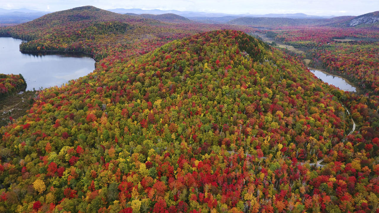 <p>The photos show the forests of Matt Benedetto's home state as they transition into their autumn foliage. (Photo: Matt Benedetto/Caters News) </p>