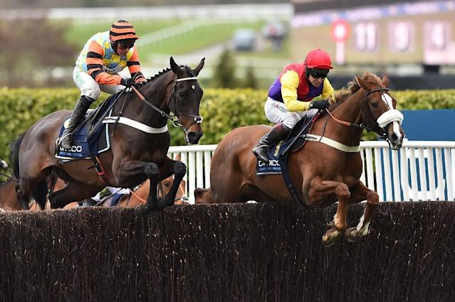 Might Bite (L) was edged out by Native River (R) in a thrilling Gold Cup in March (AFP Photo/Glyn KIRK )