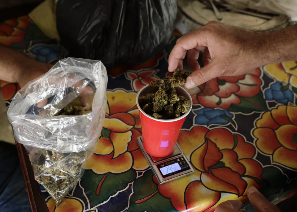 Marijuana is weighed on a scale in the mountains surrounding Badiraguato in Sinaloa state where it was grown in Mexico, Tuesday, April 6, 2021. Decades ago, marijuana was such a big business that it was carried out of the mountains on airplanes that landed on dirt roads. Now it's sold locally by some growers to stay afloat. (AP Photo/Eduardo Verdugo)