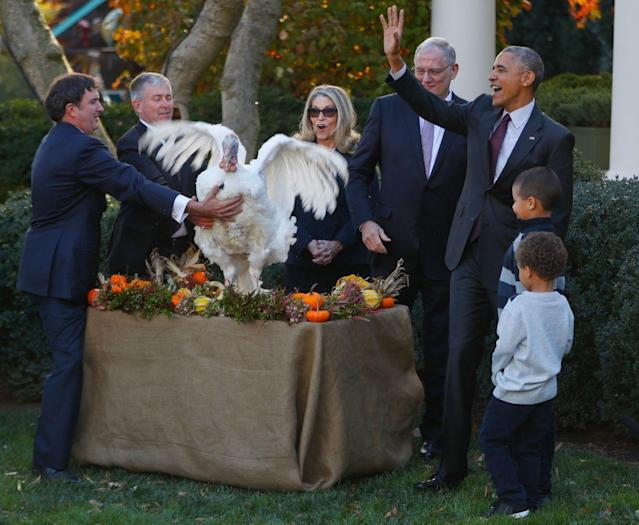 <p>President Barack Obama walks away after pardoning the National Thanksgiving Turkey, Tot, as the president's nephews Aaron Robinson and Austin Robinson, watch, Wednesday, Nov. 23, 2016, during a ceremony in the Rose Garden of the White House in Washington. (Photo: Pablo Martinez Monsivais/AP) </p>