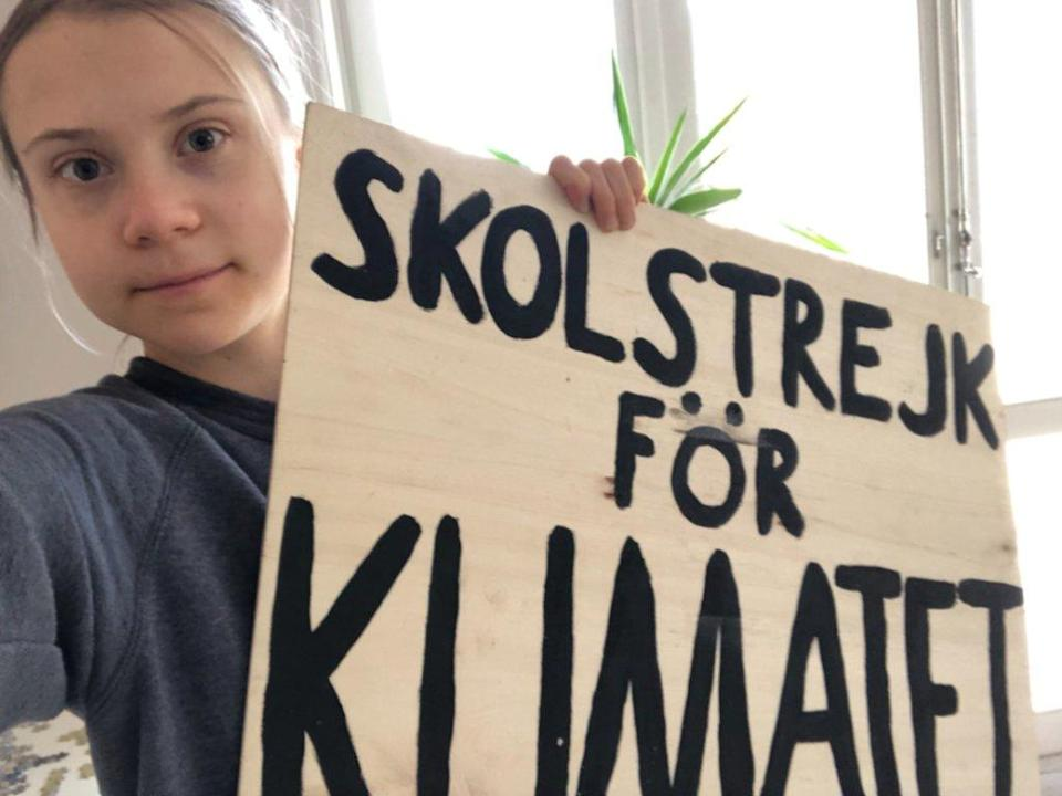 Climate activist Greta Thunberg during her climate strike at home. Image credit: Twitter/@GretaThunberg
