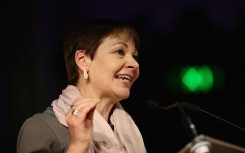 : Caroline Lucas addresses a pro-remain rally - Credit: Getty Images Europe/Jack Taylor