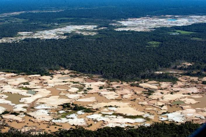 About 20 percent of the Amazon basin rainforest has been wiped out since 1970 (AFP Photo/Cris BOURONCLE)