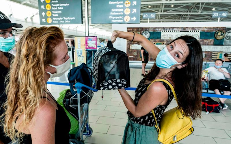 A mask-clad passenger arrives at Cyprus' Larnaca International Airport with a feline friend - AFP