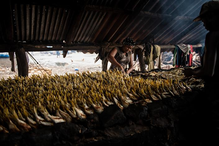 An open-air fish market in Gambia. (Fábio Nascimento / The Outlaw Ocean Project)
