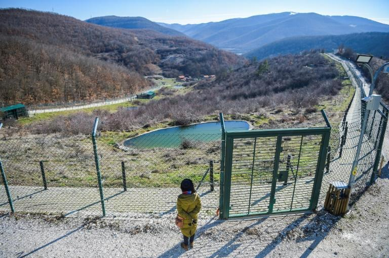 The Pristina Bear Sanctuary is a rare conservation success story in Kosovo