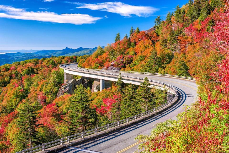 """<p><strong>Where to go:</strong> The Blue Ridge Parkway showcases over a hundred different species of trees that turn deep red, bright yellow, vivid orange, russet, and maroon (plus verdant evergreens). Drive along it the famous <a href=""""https://www.nps.gov/blri/planyourvisit/linn-cove-viaduct.htm"""" rel=""""nofollow noopener"""" target=""""_blank"""" data-ylk=""""slk:Linn Cove Viaduct"""" class=""""link rapid-noclick-resp"""">Linn Cove Viaduct</a> hugging Grandfather Mountain or hike to an overlook from the nearby visitor center. </p><p><strong>When to go:</strong> <a href=""""https://www.blueridgeparkway.org/fall-color-on-the-parkway/"""" rel=""""nofollow noopener"""" target=""""_blank"""" data-ylk=""""slk:Late October"""" class=""""link rapid-noclick-resp"""">Late October </a></p><p><a class=""""link rapid-noclick-resp"""" href=""""https://go.redirectingat.com?id=74968X1596630&url=https%3A%2F%2Fwww.tripadvisor.com%2FHotels-g1438847-North_Carolina_Mountains_North_Carolina-Hotels.html&sref=https%3A%2F%2Fwww.redbookmag.com%2Flife%2Fg34045856%2Ffall-colors%2F"""" rel=""""nofollow noopener"""" target=""""_blank"""" data-ylk=""""slk:FIND A HOTEL"""">FIND A HOTEL</a></p>"""