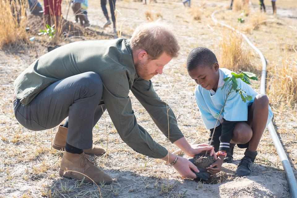 The Duke of Sussex opted for a pair of tan desert boots from Clarks which he wore during his royal tour of South Africa [Photo: Getty Images]