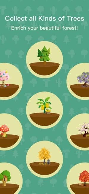 """Screenshot of Forest app showing images of different types of trees to collect and text saying """"Collect all kinds of trees, Enrich your beautiful forest"""""""