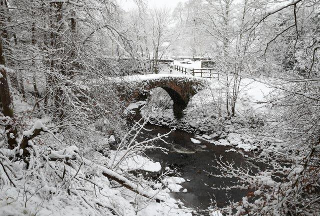 Snow-covered trees at the River Knaik at Braco, near Dunblane, in Scotland