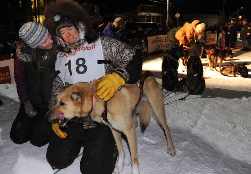 Four-time Iditarod champion Jeff King pats a dog after he finished third at Nome, Alaska, in the Iditarod Trail Sled Dog Race on Wednesday morning, March 13, 2013. (AP Photo/The Anchorage Daily News, Bill Roth)