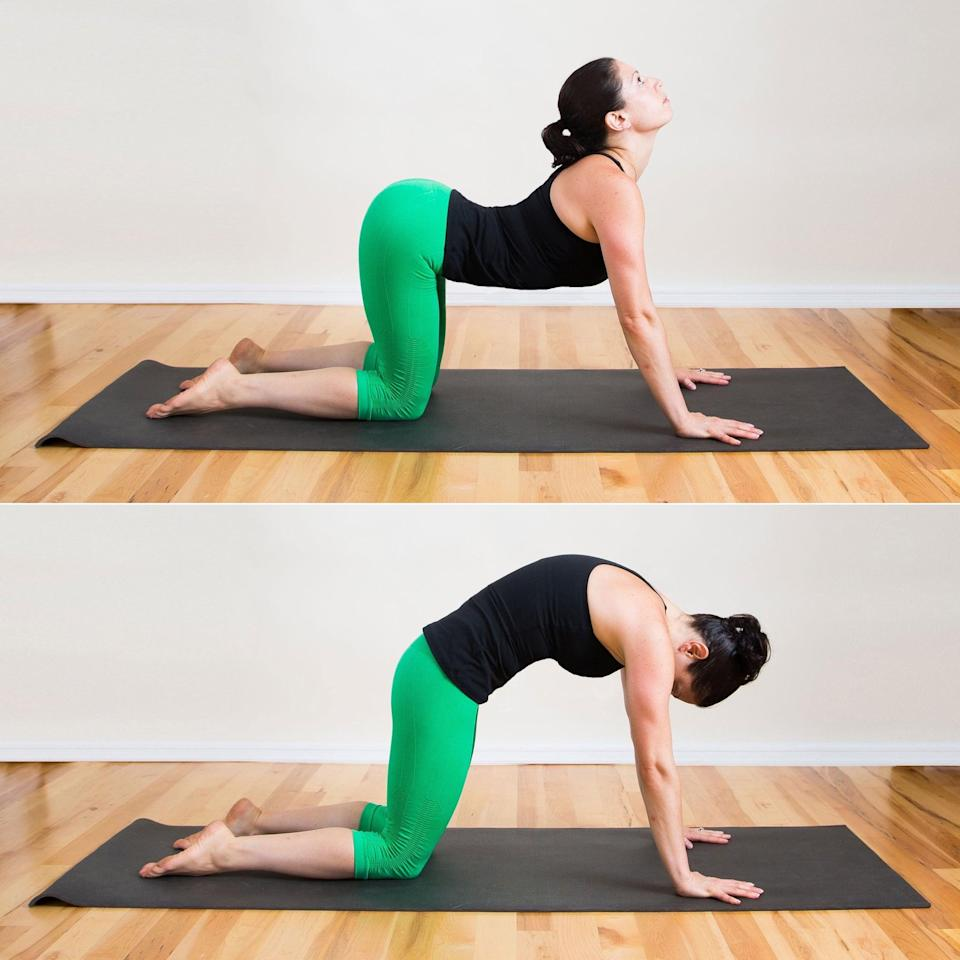 <ul> <li>Begin on your hands and knees so your back is flat and your abs engaged. As you inhale, let your belly soften, arch your back, and lift your head and tailbone. This part of the stretch is called Cow.</li> <li>With an exhale, round your spine up to the ceiling, pull your abs toward your spine, and simultaneously tuck your tailbone in and draw your chin toward your chest. This part is known as Cat.</li> <li>For a minute or so, continue flowing back and forth from Cat to Cow, breathing deeply so as not to rush each movement. </li> </ul>