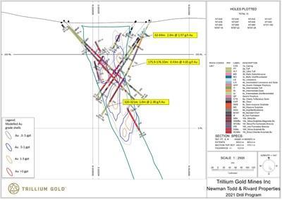 Figure 4:  Section for hole NT21-182 showing significant mineralized intersections. (CNW Group/Trillium Gold Mines Inc.)