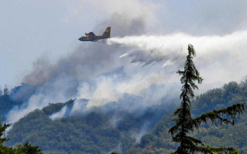 A Canadair firefighting aircraft dumps water on a forest fire in Italy - ANSA
