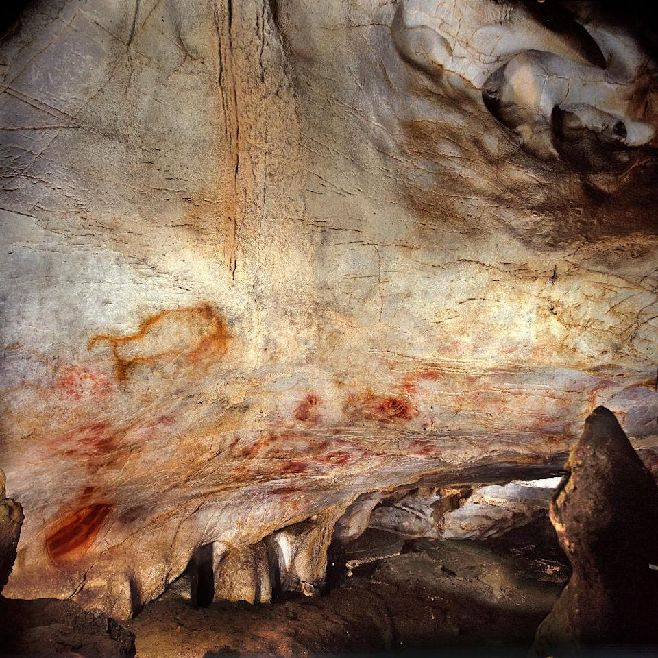 This undated handout photo provided by pedro suara/aaas shows the 'Panel of Hands', El Castillo Cave showing red disks and hand stencils made by blowing or spitting paint onto the wall. A date from a disk shows the painting to be older than 40,800 years making it the oldest known cave art in Europe. The bison overlay the hands and are therefore painted later. New tests show that crude Spanish cave paintings of a red sphere and handprints are the oldest in the world, so ancient they may not have been by modern man. They might have even been made by the much-maligned Neanderthals, some scientists suggest but others disagree. (AP Photo/Pedro Saura, AAAS)