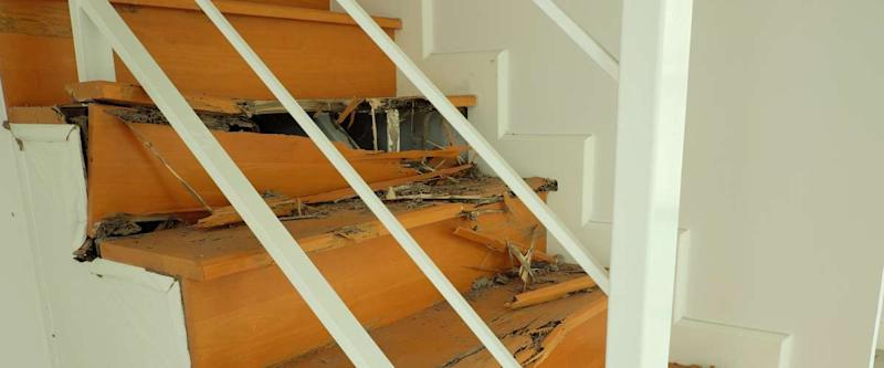 wood stairs that have been destroyed by termites