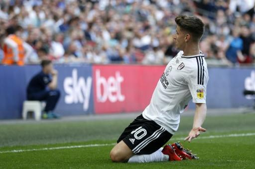 Cairney's first-half strike proved enough to take Fulham back into the Premier League