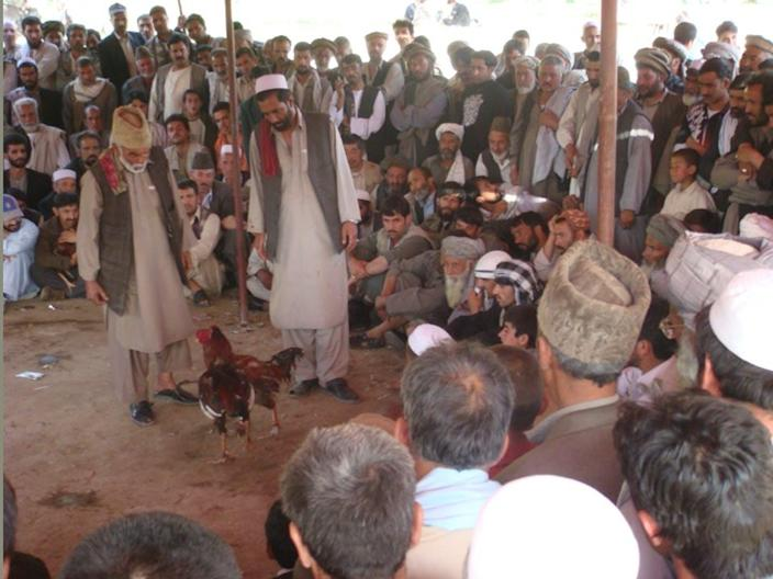 Two chickens fight in the center of a crowd of people, watching the action closely
