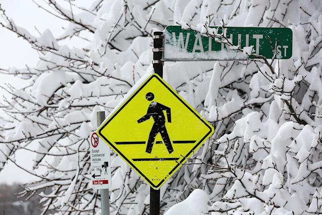BOSTON, MA - FEBRUARY 09: A tree and stret sign are covered in snow following a powerful blizzard on February 9, 2013 in Boston, Massachusetts. The storm knocked out power to 650,000 and dumped more than two feet of snow in parts of New England. (Photo by Mario Tama/Getty Images)