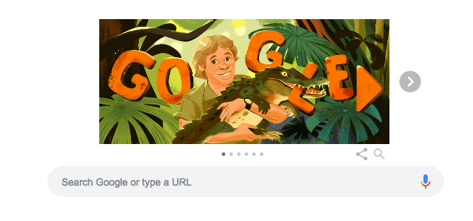 The illustration of Steve Irwin on Google's search page on Feb. 22. (Google)
