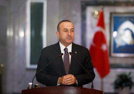 FILE PHOTO: Turkish Foreign Minister Mevlut Cavusoglu speaks during a news conference with Iraqi Foreign Minister Mohamed Ali Alhakim in Baghdad