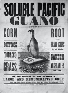 Old advert for 'soluble pacific guano'
