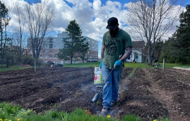 Tom Lund was doing some weed torching Saturday morning, using a flame to burn the tops of weeds getting in the way of crops.