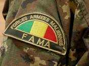 Mali's armed forces, facing a highly mobile enemy, are struggling with poor equipment and insufficient training -- they depend heavily on France for air support and intelligence