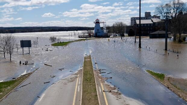 Fredericton has experienced three major floods in the last decade, says Fredericton Mayor Mike O'Brien  (Patrick Morrell / CBC News - image credit)