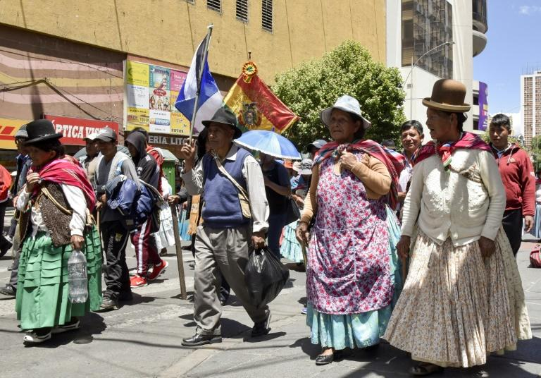 Members of President Evo Morale's Movimiento Al Socialismo (MAS) party marched in La Paz to show their support for the leftist leader