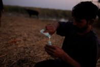 """The Wider Image: """"Our whole life depends on water"""" climate change, pollution and dams threaten Iraq's Marsh Arabs"""