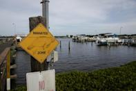 "In Florida ports, ""manatee zones"" are designated, and boaters are asked to use caution when navigating the shallow waters"