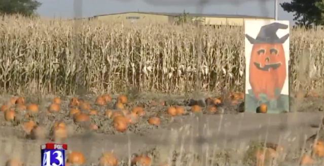 A 3-year-old boy was accidentally leftbehind atthis corn maze in Utah, police said.
