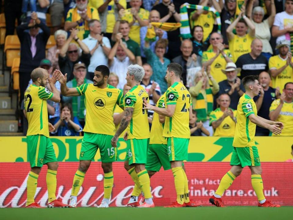 Norwich are rock bottom of the Premier League table and still in search of their first points (Getty Images)