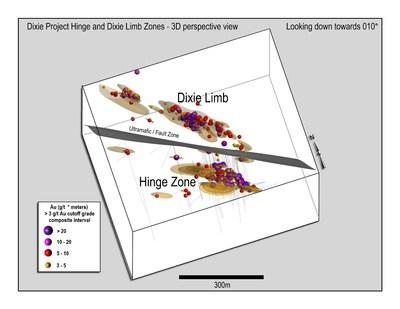 Figure 3: View downwards towards the north of the same interpreted drill results data shown in Figure 1 and Figure 2. (CNW Group/Great Bear Resources Ltd.)